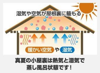 真夏の小屋裏は熱気と湿気で蒸し風呂状態です!