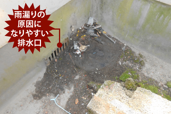 雨漏りの原因になりやすい排水口