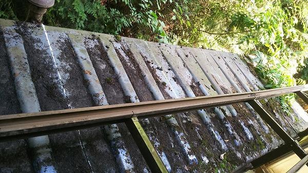 ポリカ屋根樋掃除