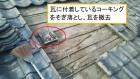 呉市アパート雨漏り葺き直し工事