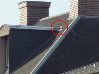 カラーベスト屋根板金不具合