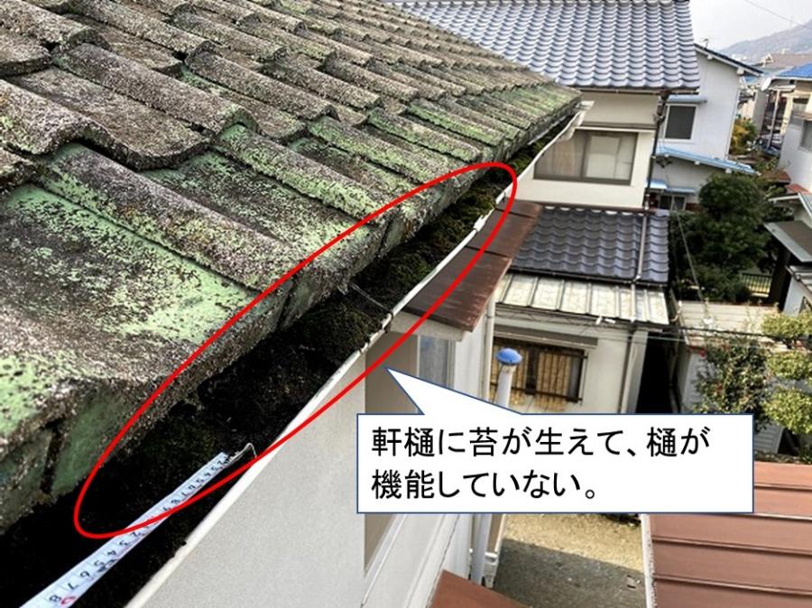軒樋排水機能なし