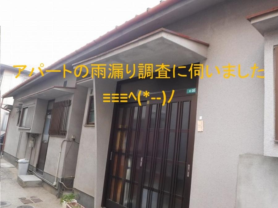 呉市 アパート雨漏り調査。他業種修理では雨漏りは止まらない⁉