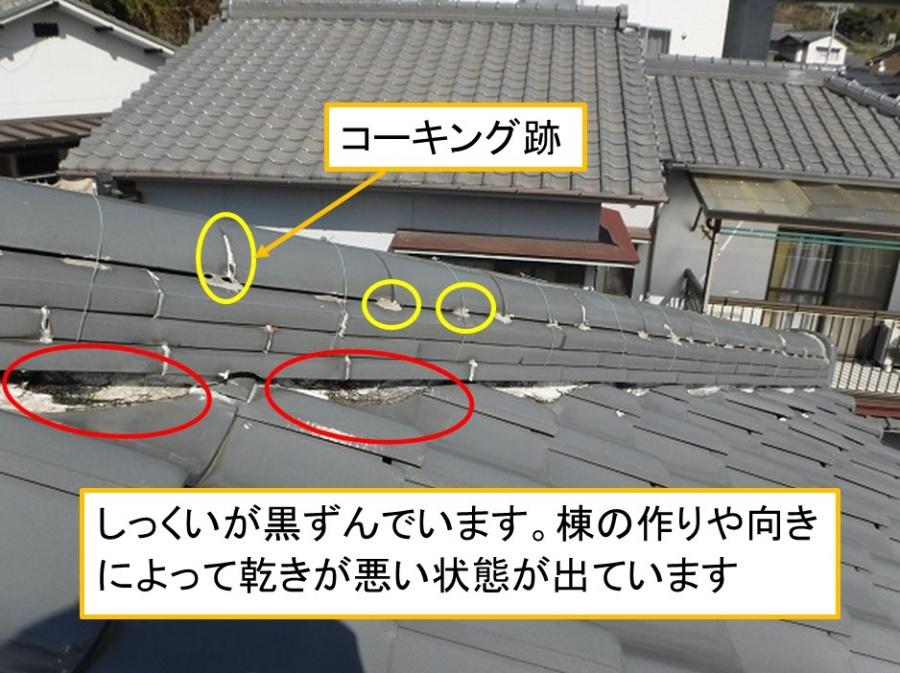 海田町しっくい調査