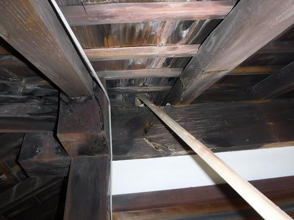 玄関近く天井より雨漏り