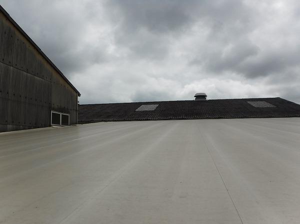 大波スレート屋根上、テント屋根