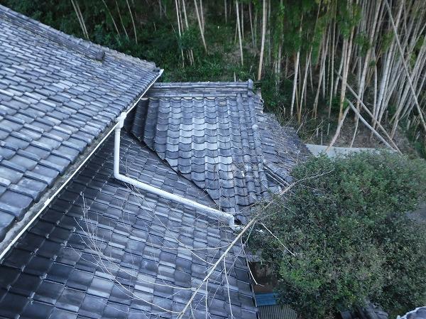 竹林から竹が倒れた屋根