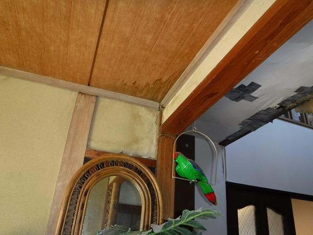 玄関上天井
