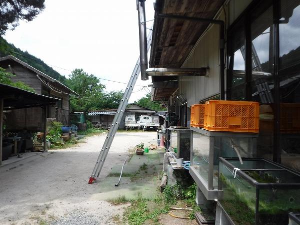 食堂屋根増築