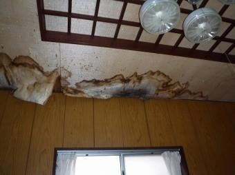 天井雨漏り