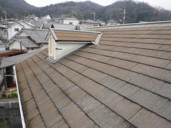 苔の付いた屋根