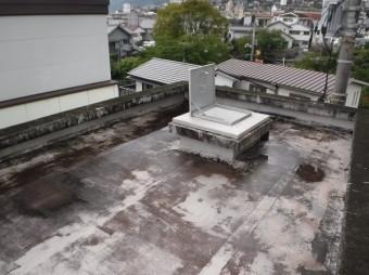屋上がプール状