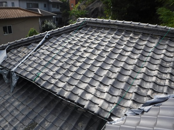 シート飛散屋根上調査