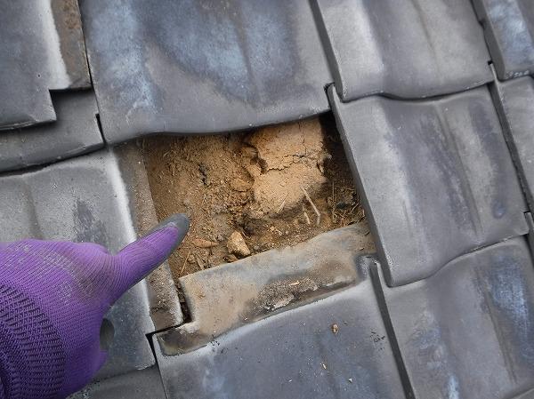 葺き替え調査土葺き