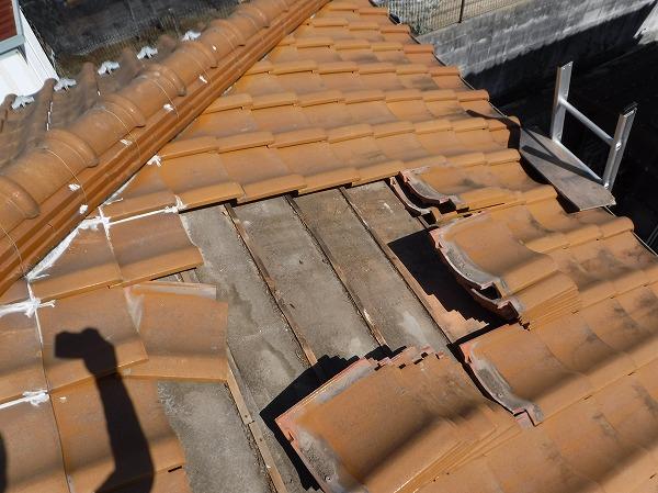 雨漏り屋根外調査