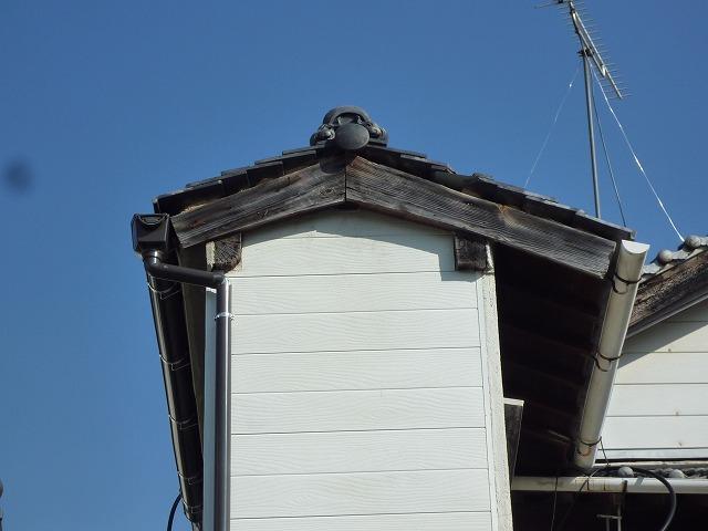 屋根上の草を除去