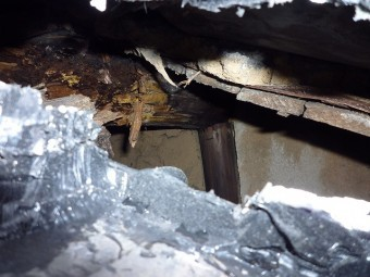 雨漏り瓦屋根屋根下地陥没