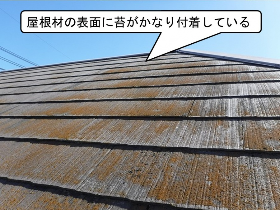 呉市カバー工法現地調査屋根上