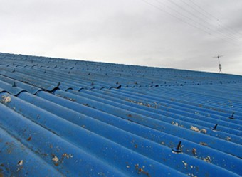 白い汚れが目立つ屋根